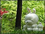韓國卡通mashimaro流氓兔子形象桌布9 - ml0008.jpg